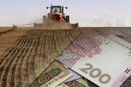 Селянин отримає від Уряду дві з половиною тисячі гривень на утримання телят